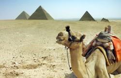 Alfa Star z Travco Travel Company of Egypt
