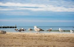 Pomorskie zaprosi Włochów na wakacje