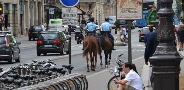 Francja z pasją - Kudłacze w podróży