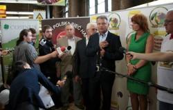 Polskie owoce i warzywa bękartami Europy?
