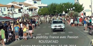 Francja z pasją. Kudłacze w podróże.