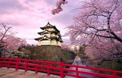 2014 rekordowy dla japońskiej turystyki