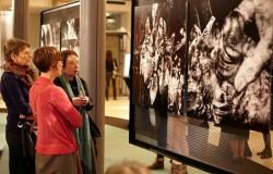 Andel's Art Łódź – wyjątkowa kolekcja sztuki