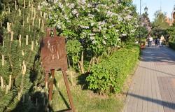Portret Kossaka na pomniku