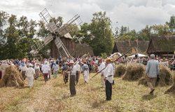 XVI Podlaskie Święto Chleba w Ciechanowcu