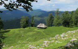 Mało znana Rumunia – góry Capatanii