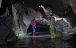 Jaskinia Brestowska