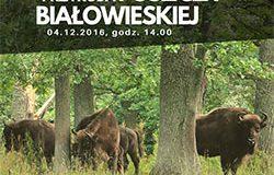 """Wystawa """"Przyroda Puszczy Białowieskiej"""""""