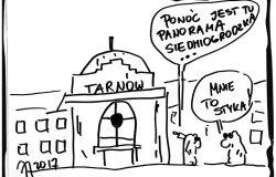 Panorama w Tarnowie