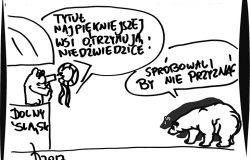 Niedźwiedzice