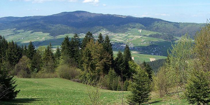 Pasmo Lubania (Gorce) od strony Pienin - Główny Szlak Beskidzki