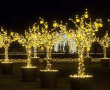 Pałac w Wilanowie otworzył Ogród Światła