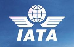 IATA: linie lotnicze – dekada na plusie