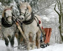 Zimowe zachcianki Polaków zaskakują hotelarzy