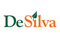 Nowi dyrektorzy w Desilva