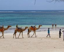 Turystyczna Afryka Wschodnia