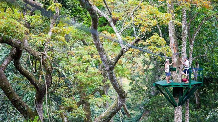 Mabira Forest Zip-line (Super Skyway) / www.ecotoursuganda.com