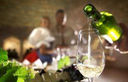 Na świętomarcińskie wino do Czech