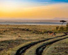 Afryka podsumowuje rok 2019 w turystyce
