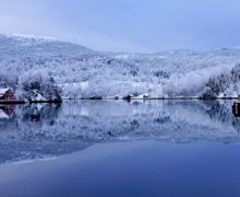 Za dziką przyrodą do Finlandii