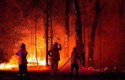 Australia pod ścianą ognia: strażacy z Małopolski pomagają i proszą o pomoc