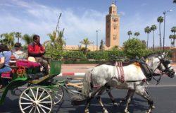 Aż się spotkamy – Maroko stara się zatrzymać lokalnych turystów
