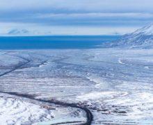 Pierwszy wolny wybór: Svalbard na biegunie