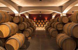 Bułgarskie winnice wśród elity