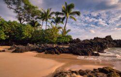 Hawaje zamykają plaże i  parki