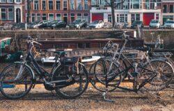Amsterdam: kwietniki kontra rowery