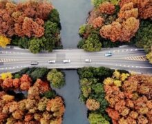 Kraina ryb i ryżu – wystawa fotograficzna online