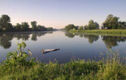 Apel o wstrzymanie planów regulacji Odry: Ochrona przeciwpowodziowa tylko pretekstem