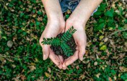 """Światowy Dzień Ziemi. Ruszamy z kampanią """"Odpowiedzialny biznes. Zdrowa planeta"""""""