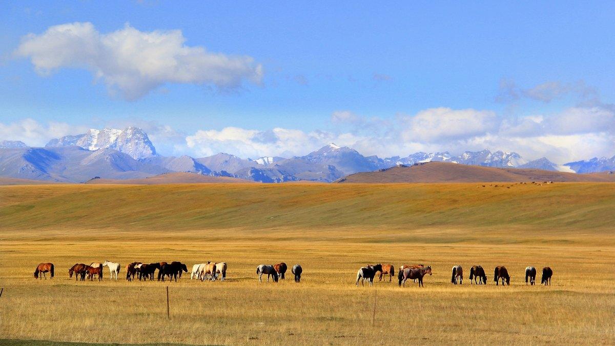 Xinjiang, Chiny