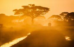RPA domaga się usunięcia z czerwonej listy podróży międzynarodowych